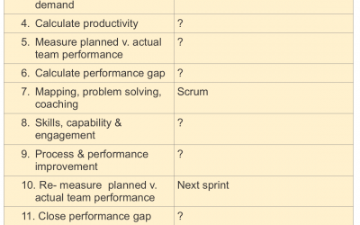 Lean or Agile in large service organisations?